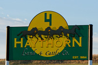 Haythorn Land & Cattle Co.
