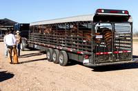 10_17kingranch delivery 2_20