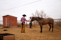 12_11 first saddle colts new mexico